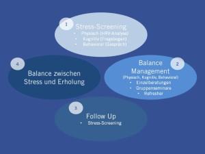 Konzept der Balance Management GmbH
