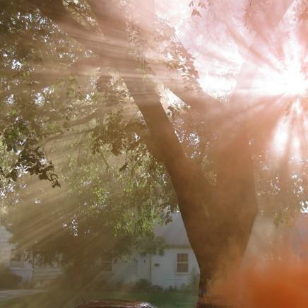 20_sunlight